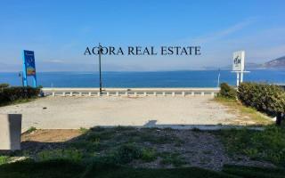 Продажа недвижимости в европе на море дубай президент его сын