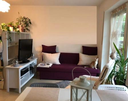 Цены на квартиры в дрездене аренда недвижимости в эстонии