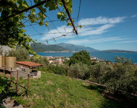 Купить землю в черногории у моря недорого оаэ недвижимость в эмиратах