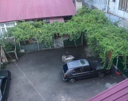 Жизнь в тбилиси отзывы кафе на крыше дубай