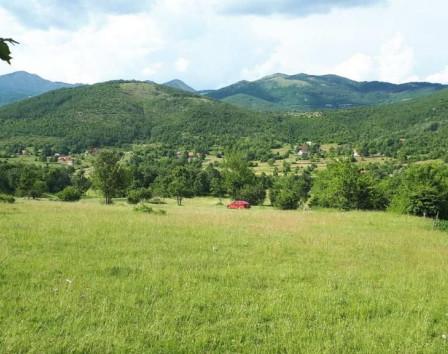 Покупка земли в черногории недвижимость в тенерифе недорого