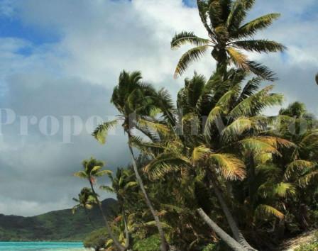 Недвижимость французская полинезия купить сколько стоит квартира в дубае в бурдж халифа