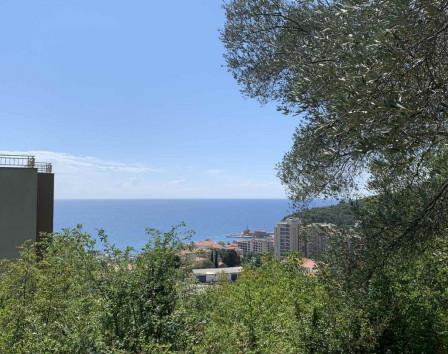 недвижимость в петроваце черногория