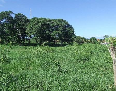 купить землю в доминиканской республике под постройку