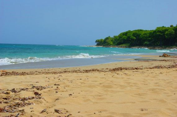 Земля в Кабарете, Доминиканская Республика, 18000 м2 - фото 1