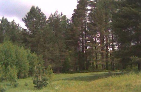 Земля в Рижском крае, Латвия, 21 Га - фото 1