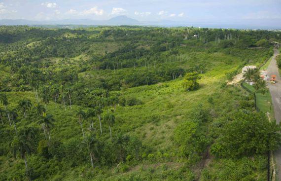 Земля в Сосуа, Доминиканская Республика, 3130 м2 - фото 8