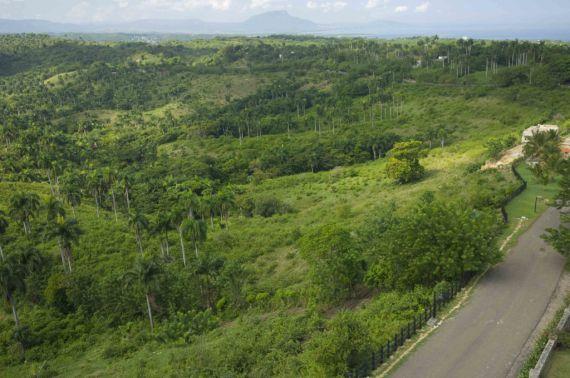 Земля в Сосуа, Доминиканская Республика, 3130 м2 - фото 10