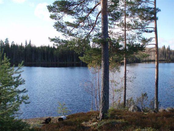 Земля в Савонлинне, Финляндия, 6600 м2 - фото 1