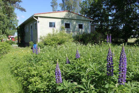 Дом в Раутъярви, Финляндия, 903 м2 - фото 1