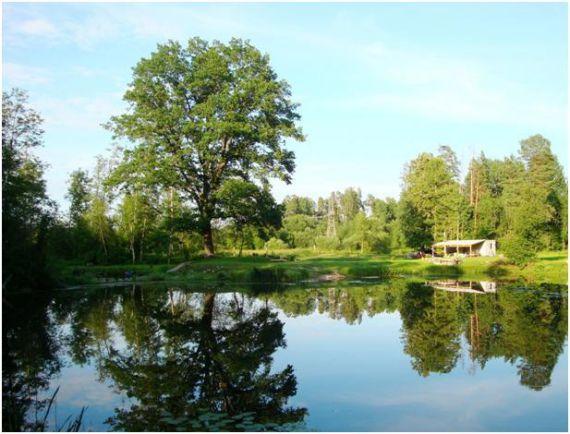 Бунгало в Елгавском крае, Латвия, 0.72 Га - фото 1
