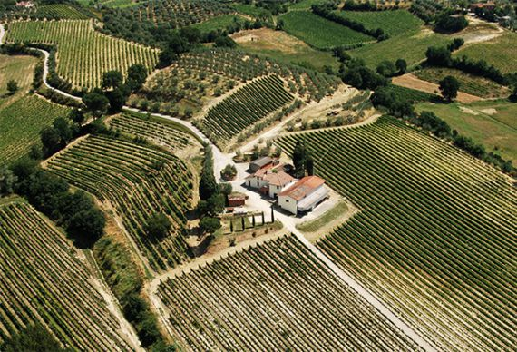 Montepulciano property and Bulgaria
