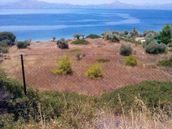 Земля в Лутраки, Греция, 4 Га - фото 1