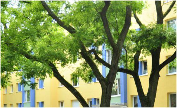 Коммерческая недвижимость в Берлине, Германия, 2394 м2 - фото 1