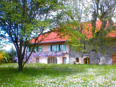 Дом в Верхней Савойе, Франция, 500 м2 - фото 1