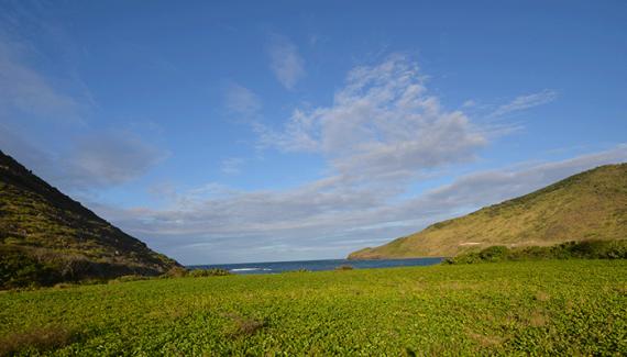 Земля на Сент-Китсе и Невисе, Карибские острова, 4641 м2 - фото 1