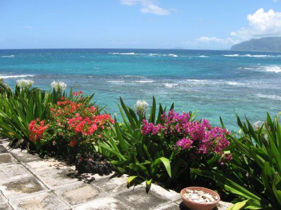 Вилла на Гавайях, США, 287 м2 - фото 1