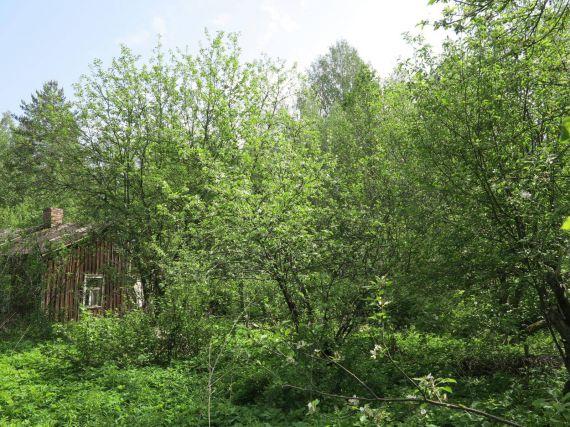 Дом в Руоколахти, Финляндия, 1.123 Га - фото 1