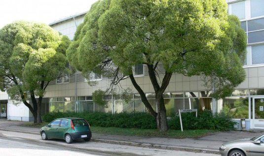 Офис в Иматре, Финляндия, 315 м2 - фото 1