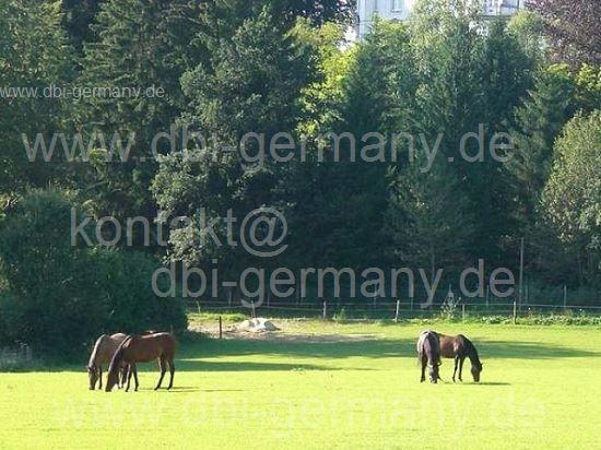 Замок в Южной Баварии, Германия, 1700 м2 - фото 1