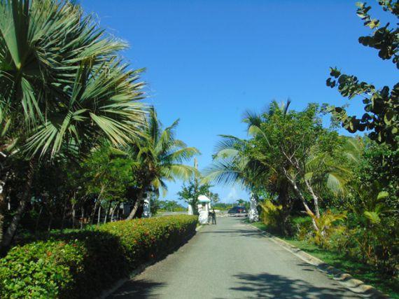 Земля в Кабарете, Доминиканская Республика, 874 м2 - фото 2