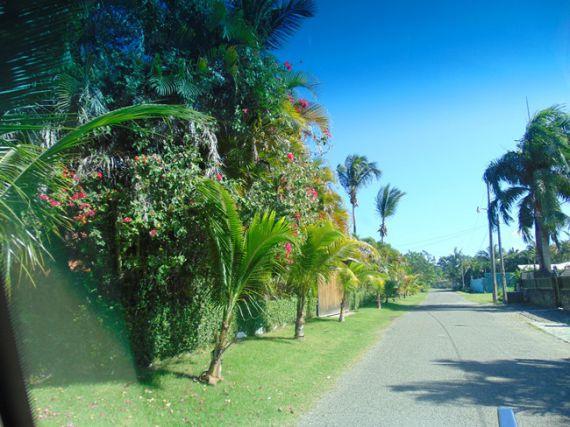 Земля в Кабарете, Доминиканская Республика, 874 м2 - фото 4