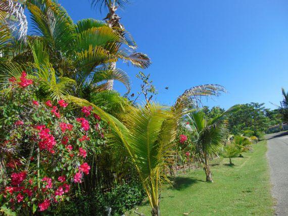 Земля в Кабарете, Доминиканская Республика, 874 м2 - фото 1