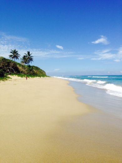 Земля в Кабарете, Доминиканская Республика, 874 м2 - фото 6