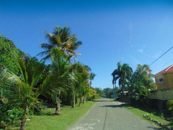 Земля в Кабарете, Доминиканская Республика, 874 м2 - фото 7