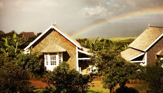 Коттедж на Сент-Китсе и Невисе, Карибские острова - фото 1