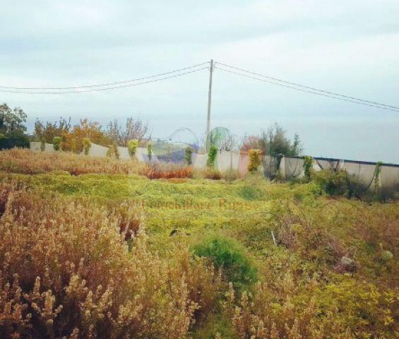 Building land in Liguria
