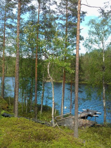 Земля в Мянтюхарью, Финляндия, 4 Га - фото 1