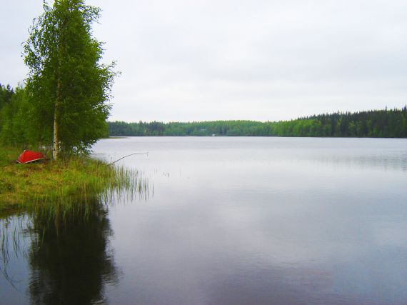 Отель, гостиница в Йоэнсуу, Финляндия, 347 м2 - фото 2