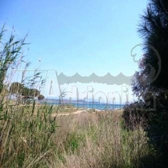 Земля в Аттике, Греция, 16000 м2 - фото 1