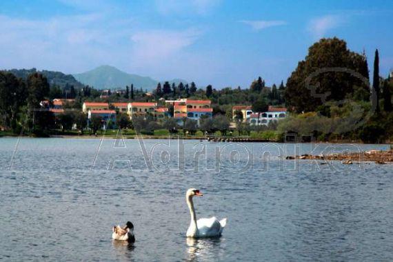 Апартаменты на Керкире, Греция, 45 м2 - фото 1