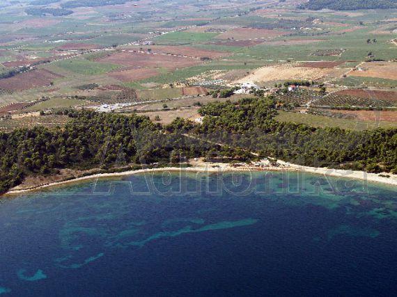 Земля на Кассандре, Греция, 3200 м2 - фото 1