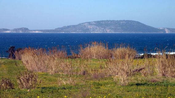 Земля на Пелопоннесе, Греция - фото 1