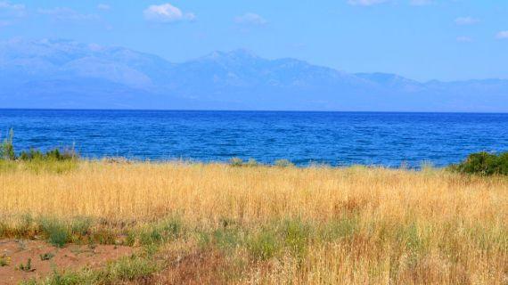Земля на Пелопоннесе, Греция, 250 м2 - фото 1