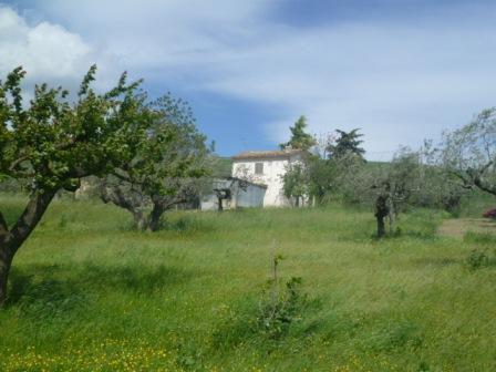Квартира в Абруццо, Италия, 53 м2 - фото 1