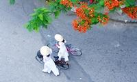 Зарубежные инвесторы возвращаются на рынок Вьетнама