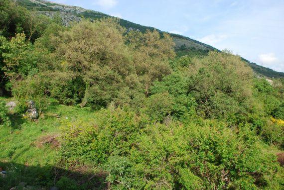 Земля в Сутоморе, Черногория, 628 м2 - фото 1