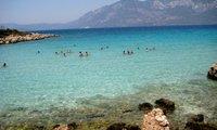 Названы самые популярные пляжные курорты для новогоднего отдыха