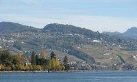 Мигрантов, не знающих язык, будут выдворять из Швейцарии…Дайджест Prian.ru c 25 по 31 марта 2013