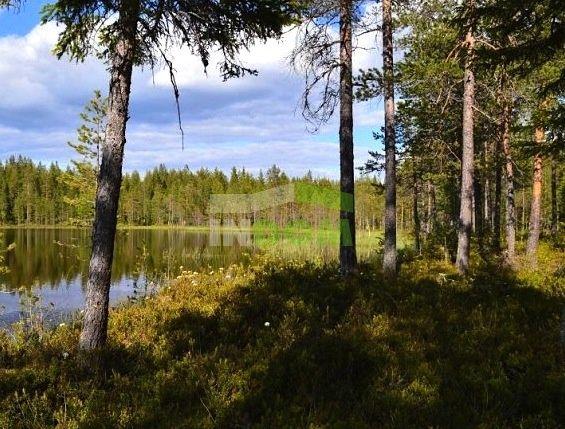 Земля в Миккели, Финляндия, 10000 м2 - фото 1