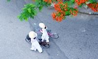 Реформы во Вьетнаме должны привлечь инвесторов