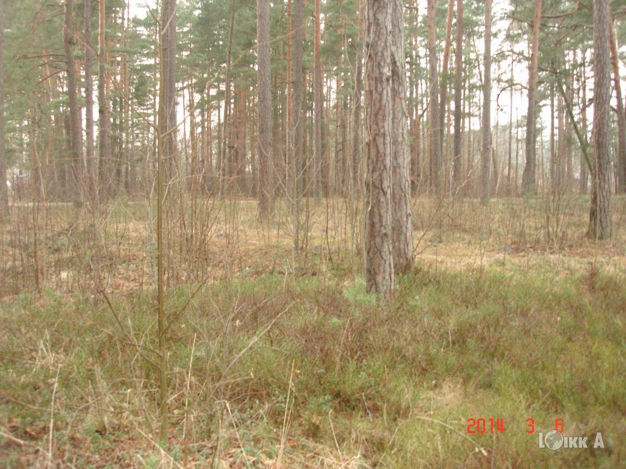 Земля в Юрмале, Латвия, 2228 м2 - фото 1