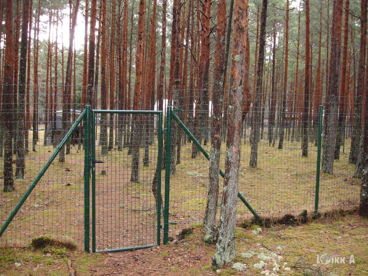 Земля в Юрмале, Латвия, 1620 м2 - фото 1