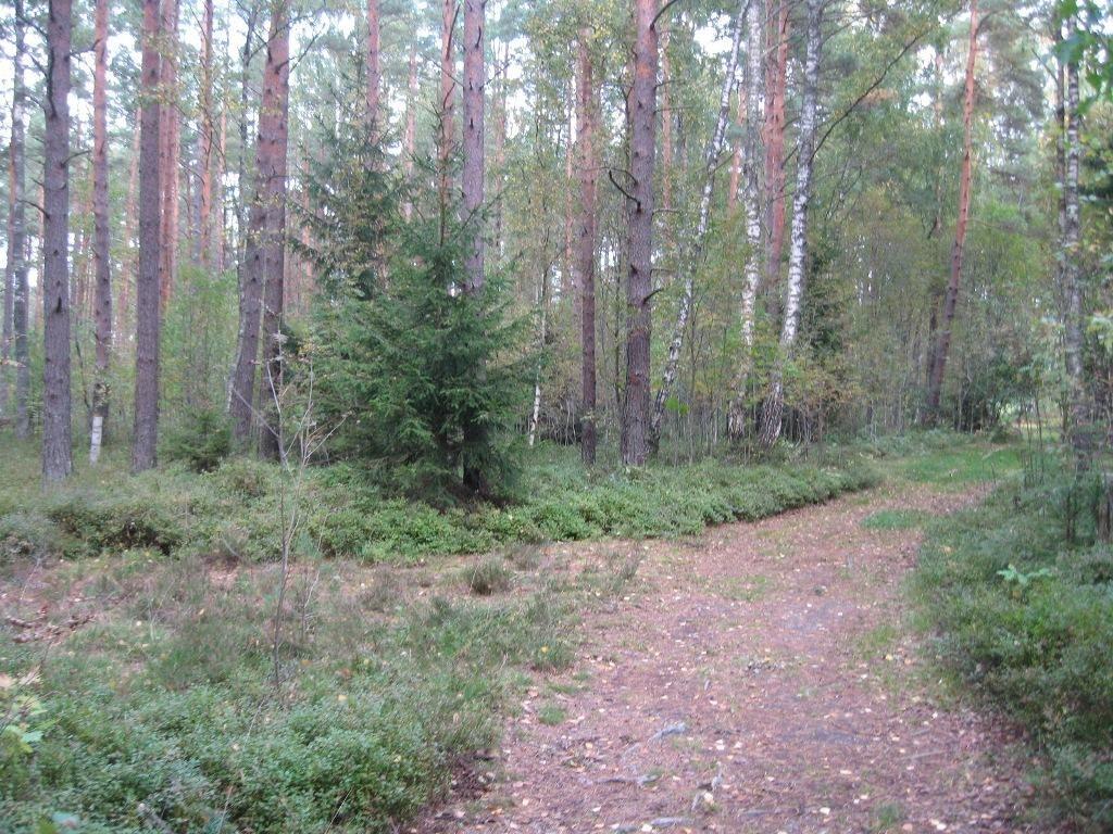Земля в Мерсрагс, Латвия, 5000 м2 - фото 1