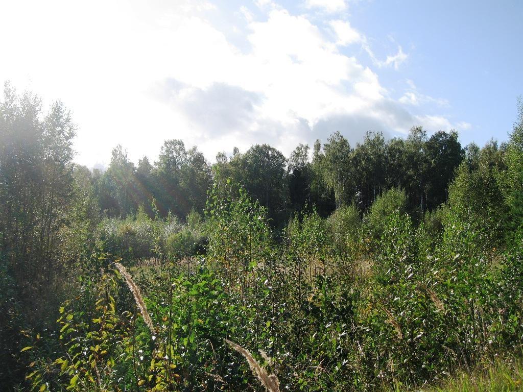 Земля в Мерсрагс, Латвия, 33000 м2 - фото 1