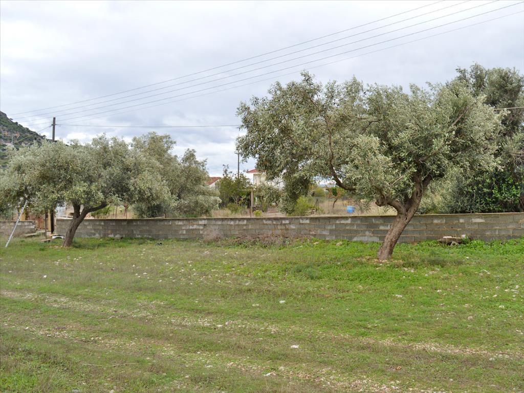 Земля в Вуле, Греция, 309 м2 - фото 1